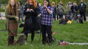 Bigbítová Plzeň: Milník času přivítal X-Cover, Plymout, Five River a další