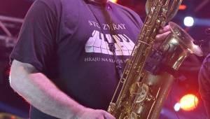Do Plzně přijeli Sto zvířat, Švihadlo a V3Ska: Šeříková se vlnila v rytmech ska a reggae