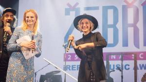 Předávání cen Žebřík: Na pódium si pro sošky chodili Barbora Poláková, Anna K. nebo The Silver Spoons