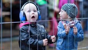 Festival s nejlepším výhledem? Keltská noc! Pod skokanskými můstky v Harrachově hráli Tři sestry, Ivan Mládek nebo Dymytry