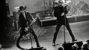Třicet let punkové Slobodné Európy: V Akropoli gratulovali členové SPS nebo Plexis