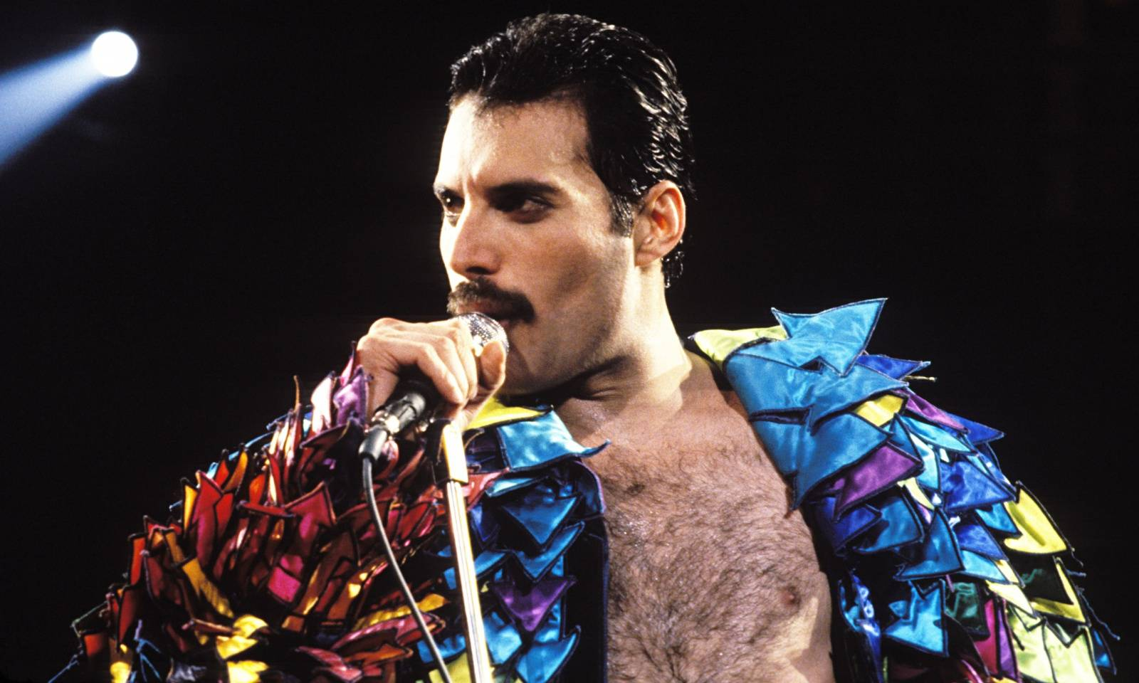 Freddie Mercury bude konečně na filmovém plátně, píše se nový scénář