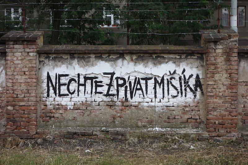 Fanoušci nechají Vladimíra Mišíka zpívat z filmu. Na dokončení poslali přes půl milionu