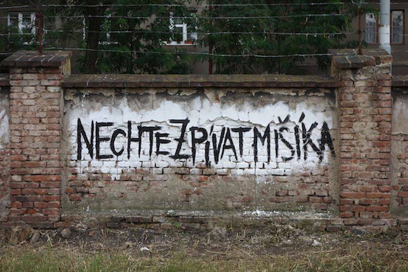 Film Nechte zpívat Mišíka míří z kin i na obrazovky České televize