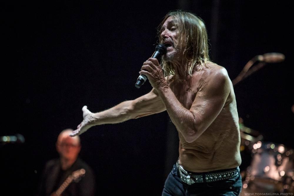 Světové hvězdy u vás doma. Metallica, Dave Grohl nebo Iggy Pop hrají svým fanouškům, Anthony Hopkins kočce