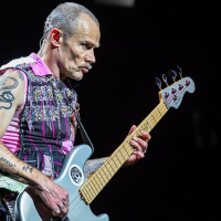 Vedlejšáky Red Hot Chili Peppers | Flea
