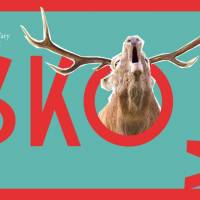 SKOK – pop-up bar & party stage na IFFKV 2018