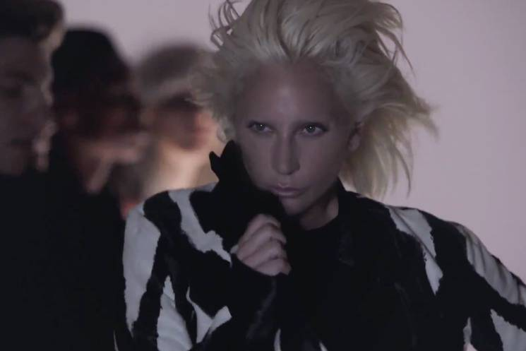 VIDEO: Lady Gaga chce vaši lásku. Spojila se proto s Nilem Rodgersem