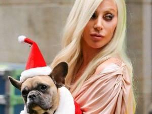 VIDEO: Žena roku Lady Gaga složila poctu Franku Sinatrovi. Takhle zapěla New York, New York