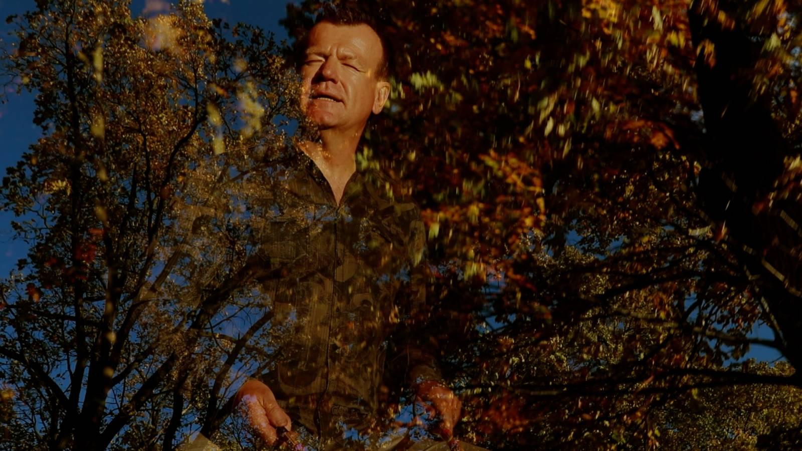VIDEOPREMIÉRA: České srdce bije V korunách stromů