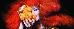 """Björk vydá nové """"app-album"""" v pěti verzích a v dubové krabičce"""