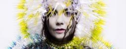 Bažant Pohoda 2015 zná denní line-up. Kdy vystoupí Björk?