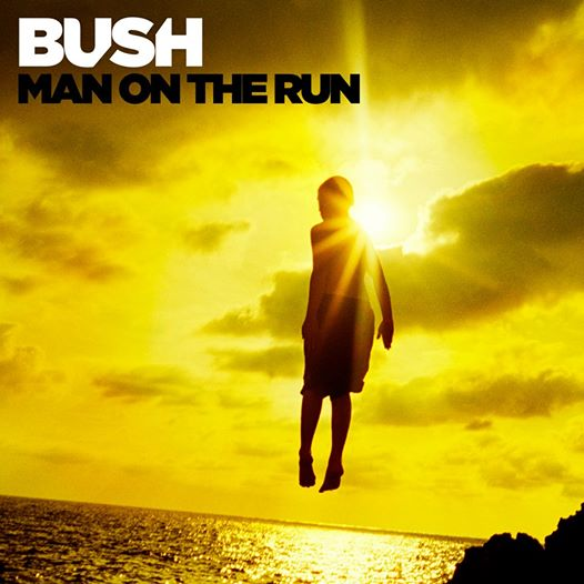Bush manOntheRun