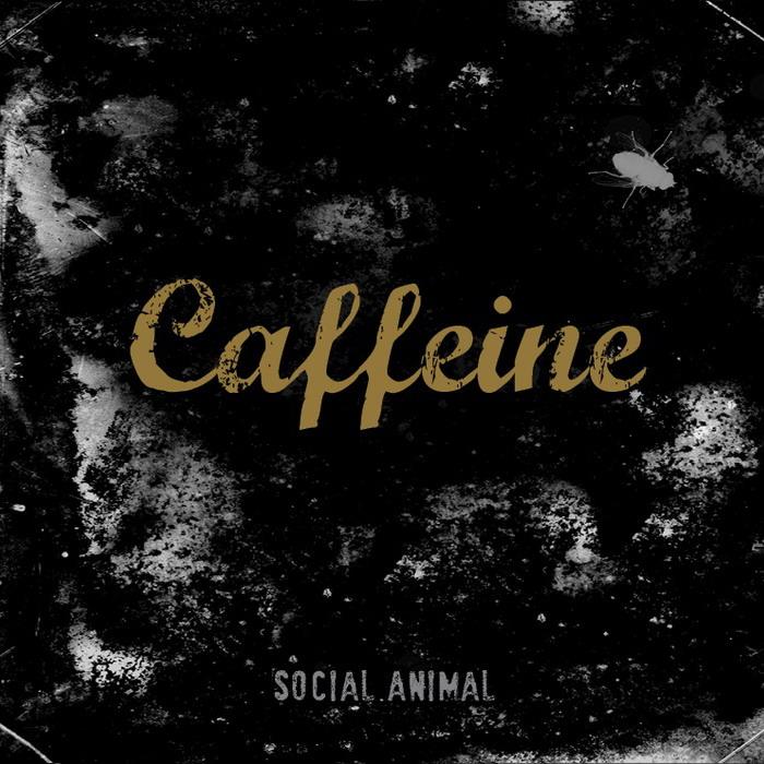 RECENZE: Caffeine nechybí chytlavost, návykovost zatím ano