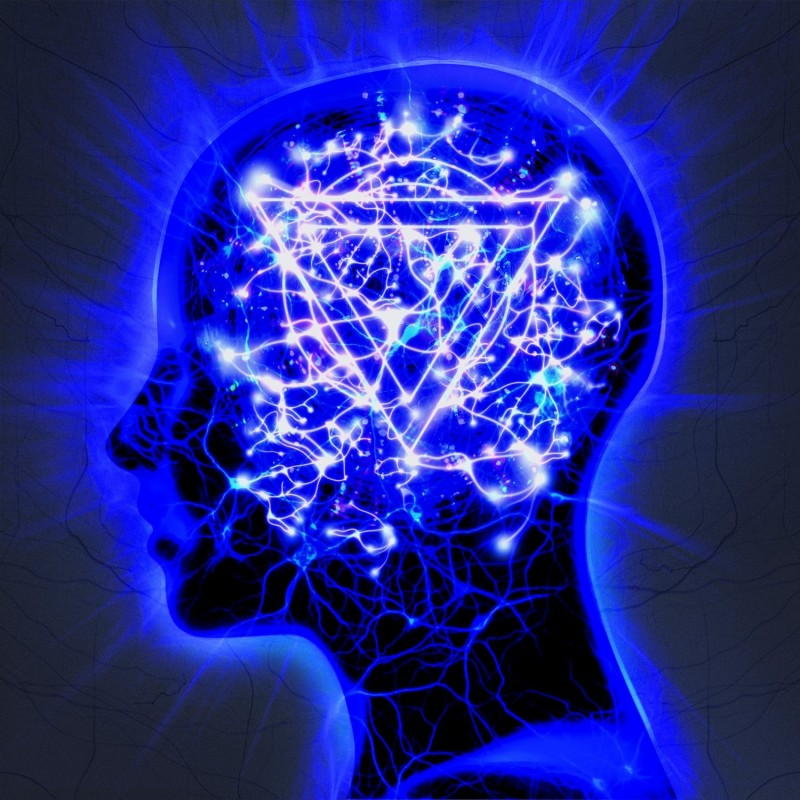 Enter Shikari  The Mindsweep
