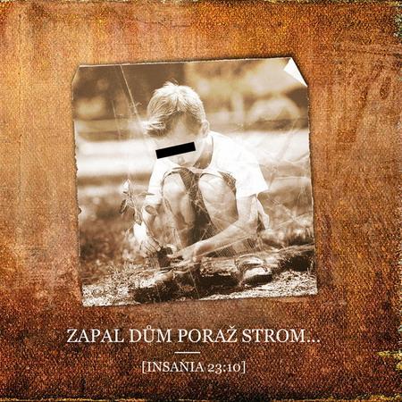 TOP 10 nejlepších česko-slovenských alb roku 2013