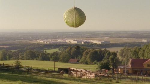 Film: Vše pro dobro světa a Nošovic