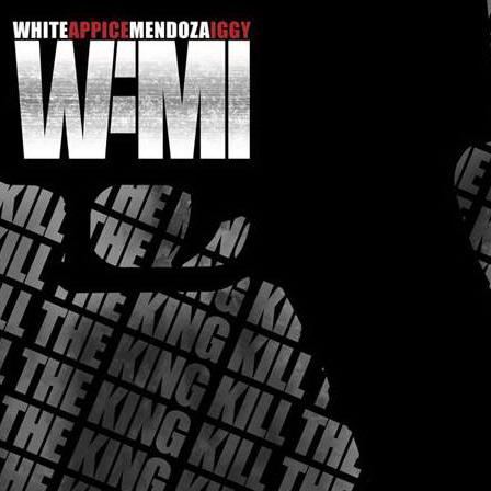 RECENZE: Projekt WAMI přetavil Popelčinu anabázi v poctivý hard rock