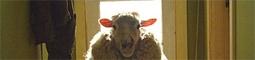 Černé ovce - černá komedie alá Gremlins