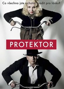 Protektor na DVD