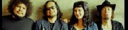 Tarantinova tarantule v Rock Café