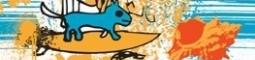 Surfaři si dají dostaveníčko v Radosti
